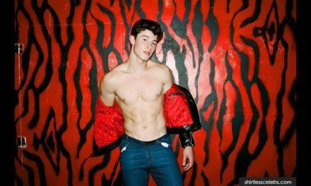 Shawn Mendes'i Grammy heyecanı sardı!